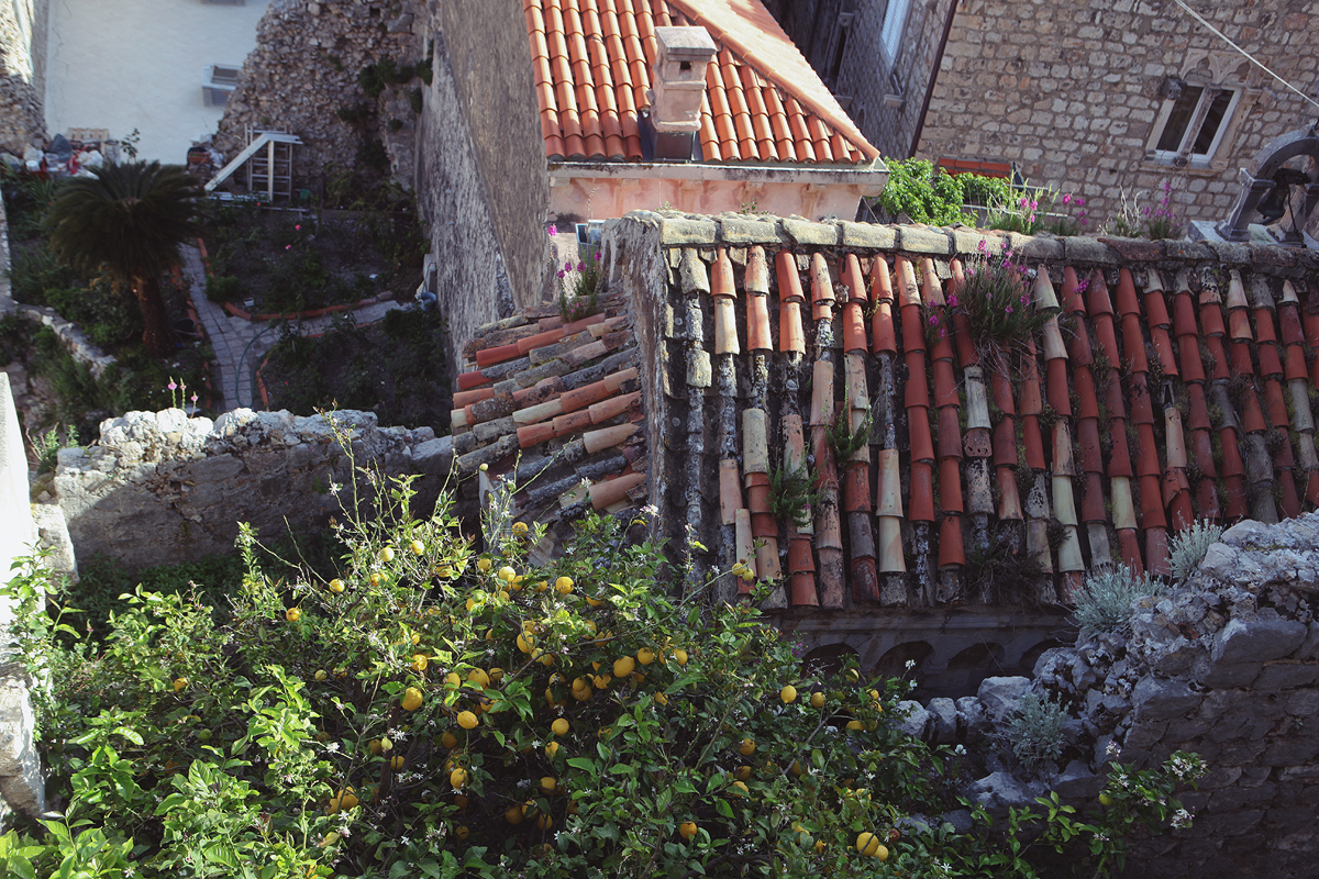 Mighty Dubrovnik walls suffered after 1667 earthquake