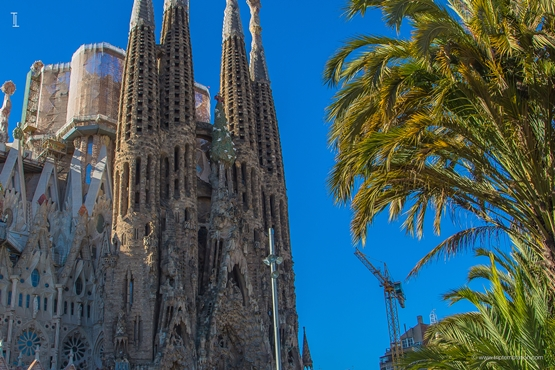 Sagrada Familia wallpaper in Barcelona