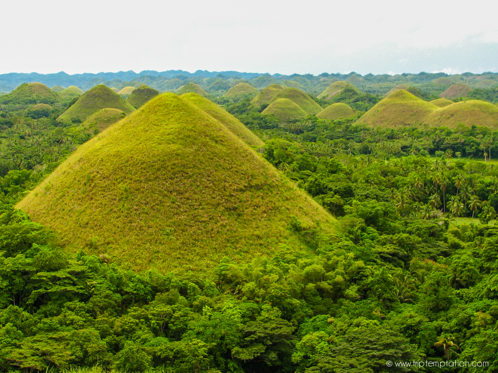 Bohol, Philippines, the best hotels Philippines, The Chocolate Hills