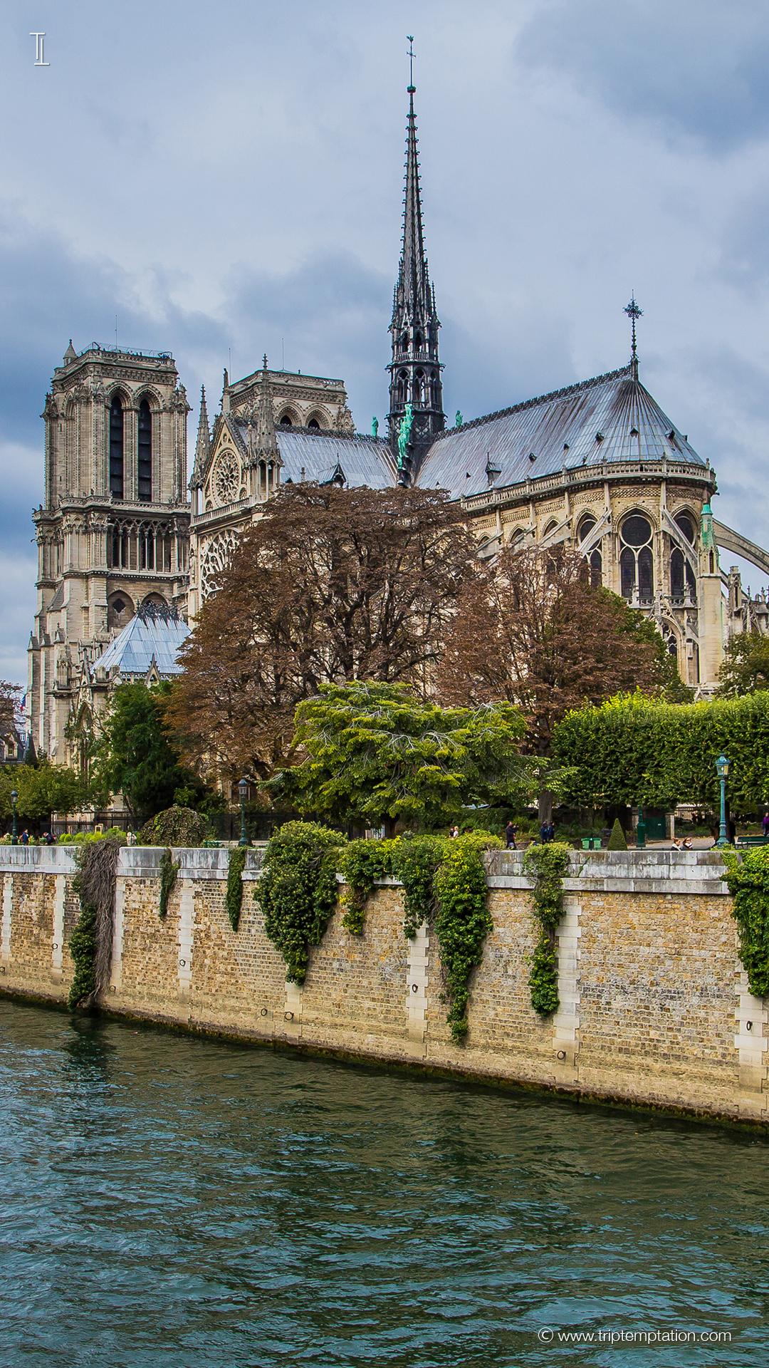Download Notre Dame De Paris Iphone 6 Plus
