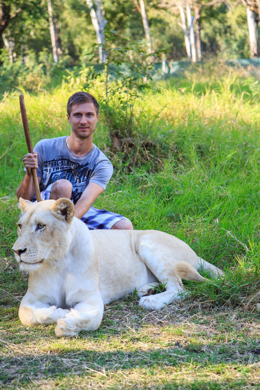Extreme walk with lions