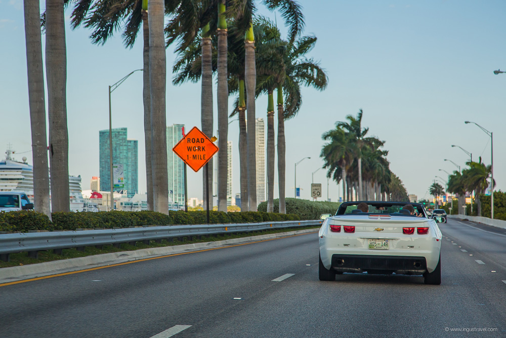 Miami dowtown driving palms