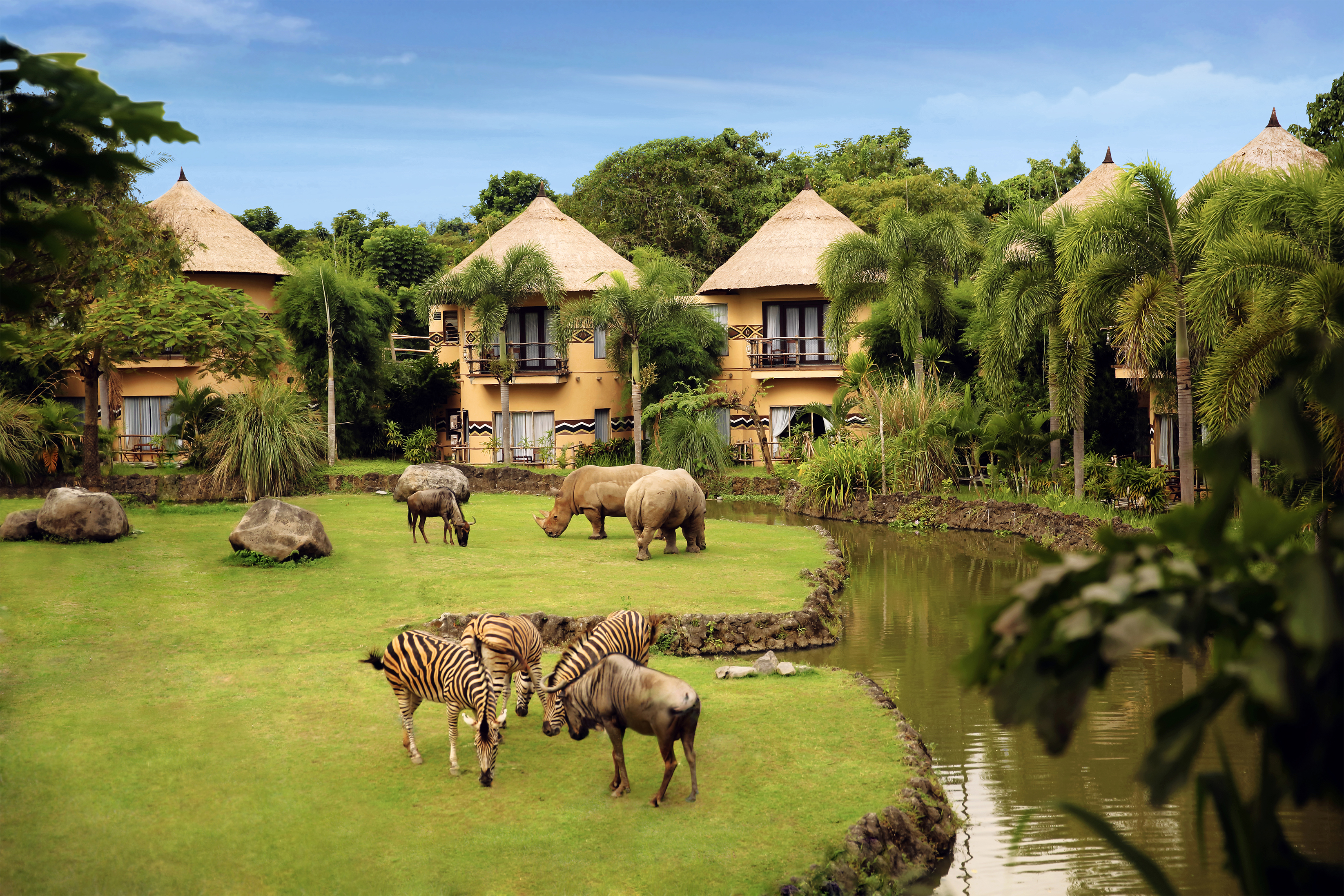 Five Reasons You Should Visit Bali Safari and Marine Park ...