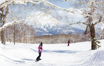 Hokkaido: Guidelines to a Perfect Snow Holiday