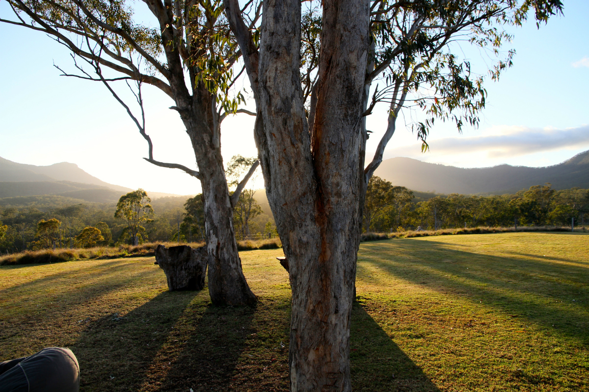 Beautiful view Spicers Canopy