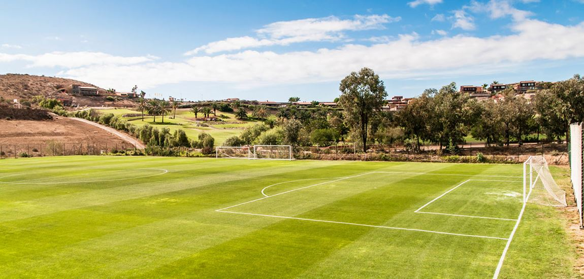 Football pitch view