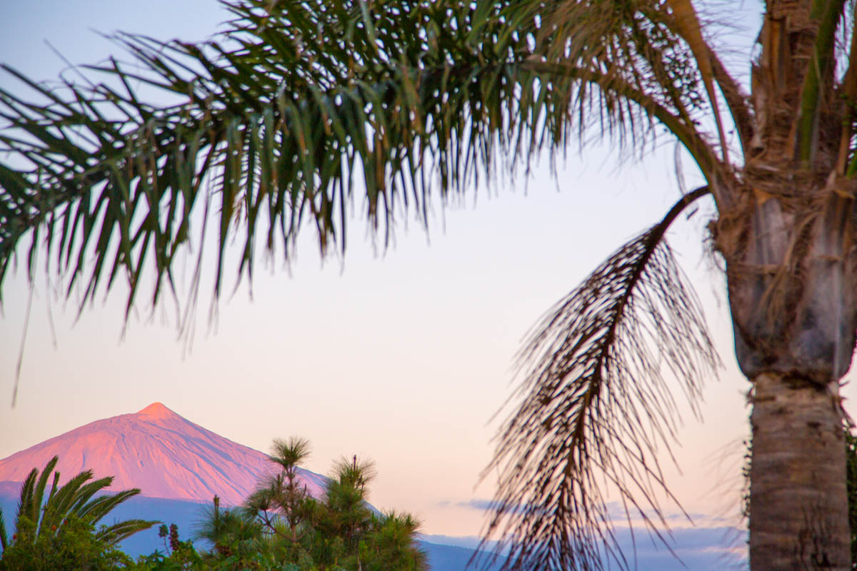 Teide mountain closeup