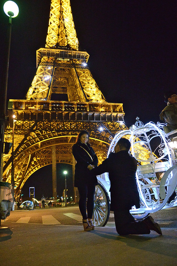 How To Make A Perfect Marriage Proposal In Paris In The