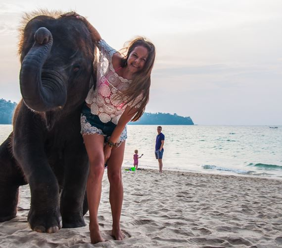 how to meet elephant on the beach