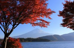 Four Amazing Places to go on Holiday in Japan