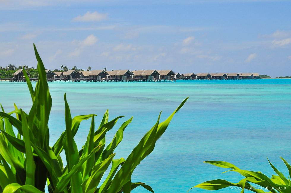 Shangri-La paradise Maldives SPA Resort