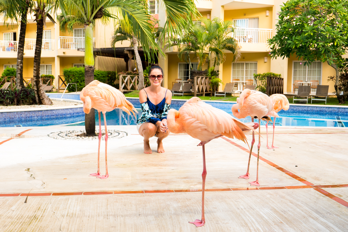 Posing with flamingo near swimming pool